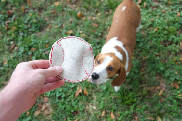 How to Make a Really Durable Dog Toy