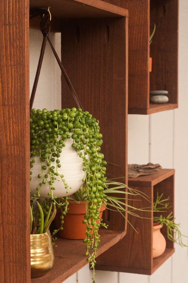 How To Make These Diy Rustic Floating Plant Boxes Man