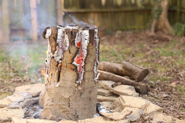 buring swedish flame log