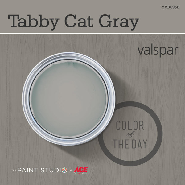 Tabby Cat Gray from Valspar