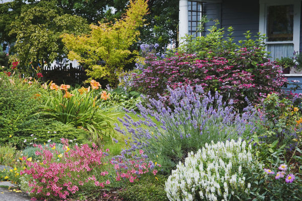 17 Landscaping Ideas For A Low Maintenance Yard Man Made