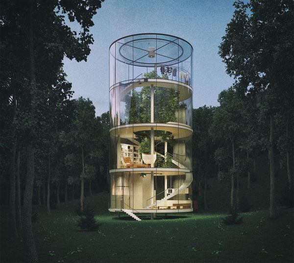 The Glass House Built Around A Tree
