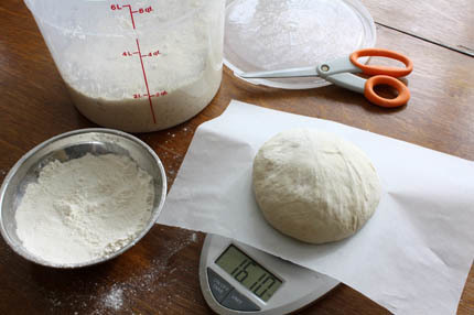 fresh-yeast-dough10